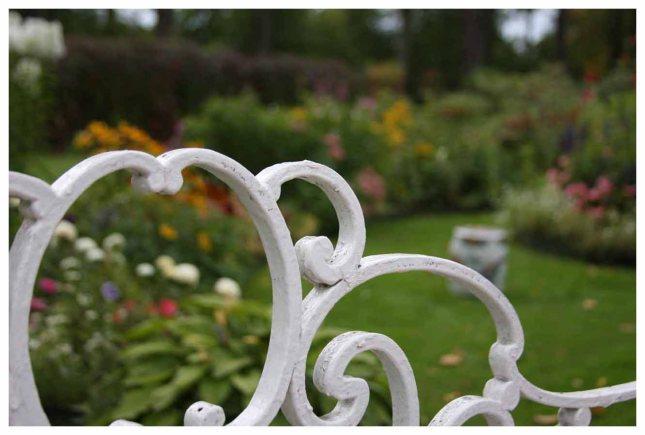 Perennial border through a wrought iron bench.photo by Morgan Thomas